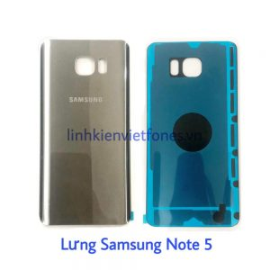 lung note5