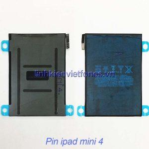 pin ipad mini 4